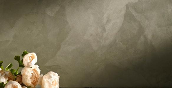 wandafwerking-animamundi
